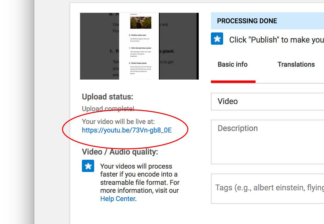 YouTube URL location