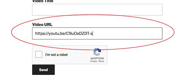 Video URL field